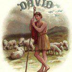 shepherd_david__image_5_sjpg1274