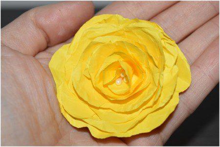 floare model