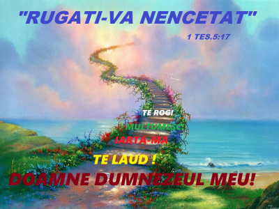 escalera-al-cielo (1)