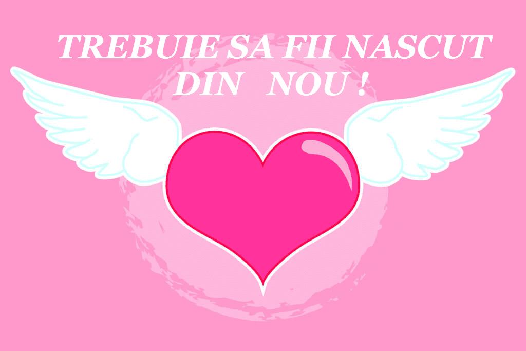 corazon-rosa-alado