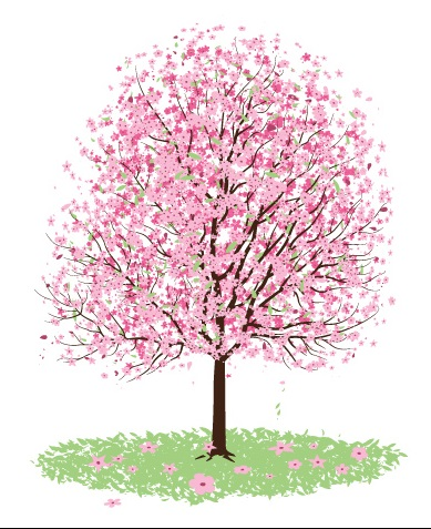 cherry-blossom-tree-clip-art-food-and-drink-pictures-V7Owyk-clipart
