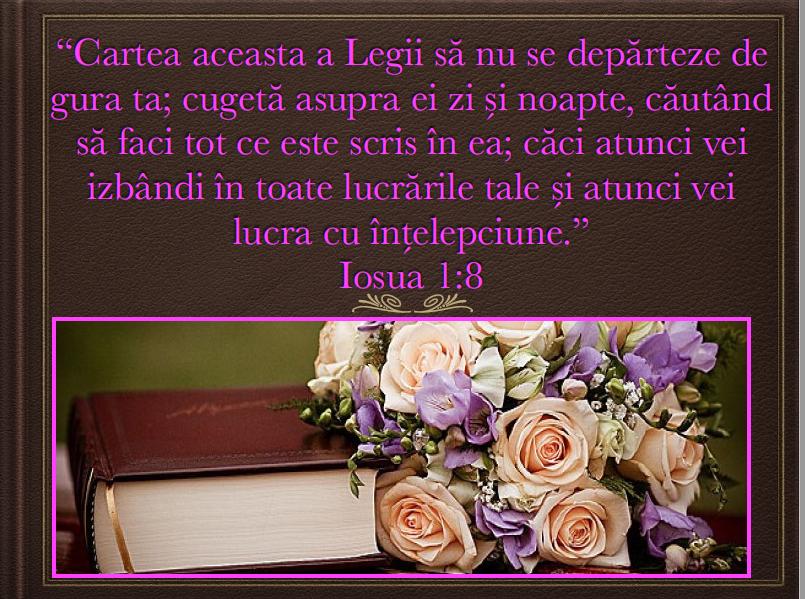Iosua 1.8