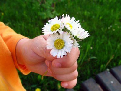 flowers-mum-822352