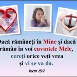 Ioan 15.7