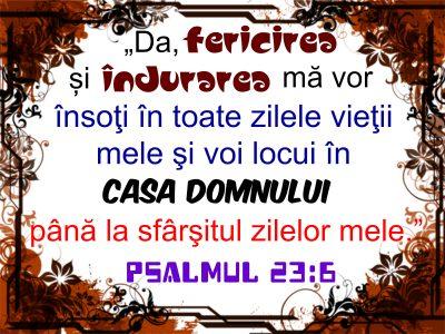 Psalmul 23.6