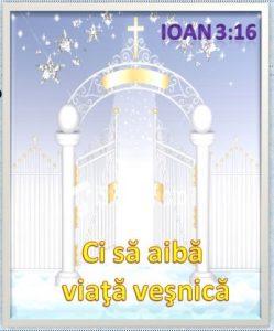 Ioan3.16 c