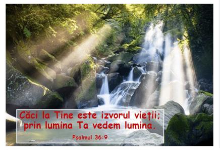 Psalmul 36.9