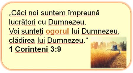 1 Corinteni 3.9
