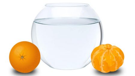 Waterbowl_Oranges